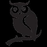 The Reflective Educator Owl